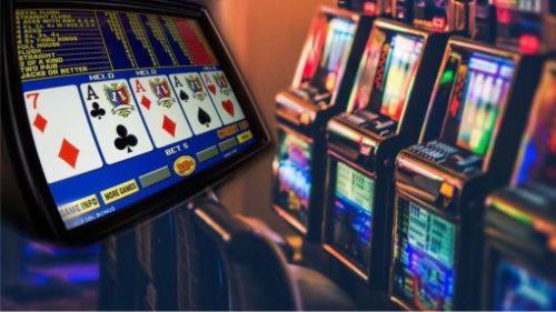 lucky kiwi Slot Machine